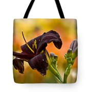 Daylily Picture 514 Tote Bag
