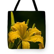 Daylily Picture 539 Tote Bag