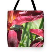 Daylily Shade For A Tree Frog Tote Bag