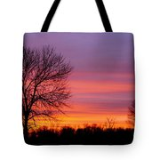Day's End Elm Tote Bag