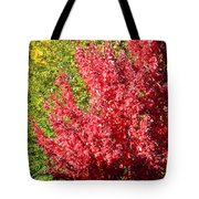 Days Like This Tote Bag by Kathy Bassett
