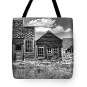Days Of Glory Gone Tote Bag by Sandra Bronstein