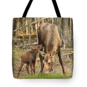 Days Old Tote Bag