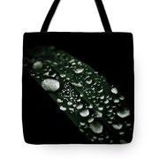 Dazzlin' Tote Bag