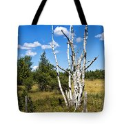 Dead Birch Trees Tote Bag
