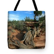 Dead Horse Point Tree 1 Tote Bag