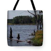Dead Lake Tote Bag