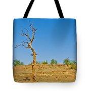 Dead Single Tree Tote Bag