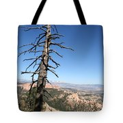 Dead Tree At Bryce Canyon  Overlook Tote Bag