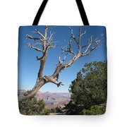 Dead Tree At Grand Canyon South Rim Tote Bag