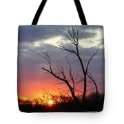 Dead Tree At Sunset Tote Bag