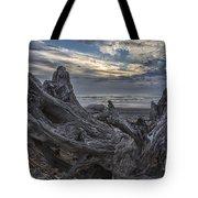 Dead Tree On Beach Tote Bag