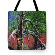 Dead Tree On Cinder At Sunset Crater Tote Bag