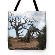 Dead Tree - Natural Bridges National Park Tote Bag