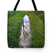 Dead Treeflection Tote Bag