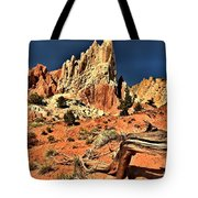 Dead Trees In A Rainbow Desert Tote Bag