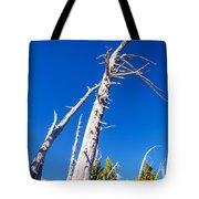 Dead White Trees Tote Bag