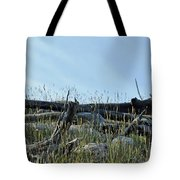 Deadfall And Grasses And Brushed Blue Skies Tote Bag