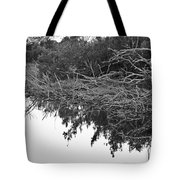 Deadfall Reflection In Black And White Tote Bag
