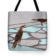 Death Valley Birds Tote Bag