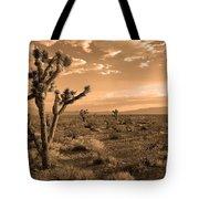 Death Valley Solitude Tote Bag