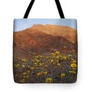 Death Valley Spring 2 Tote Bag