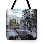 December Afternoon At The Red Boathouse Tote Bag