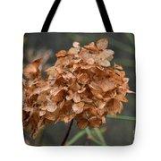 December Hydrangea II Tote Bag