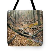 Deciduous Forest With Ravines Tote Bag