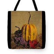 Decorative Gourd  Tote Bag