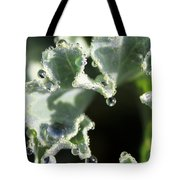 Decorative Kale With Dew Tote Bag