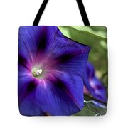 Deep Blue Morning Glories Tote Bag