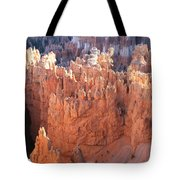 Deep Canyon - Bryce Np Tote Bag