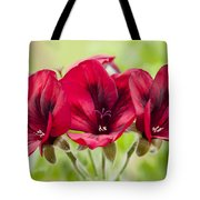 Deep Crimson Pelargonium Tote Bag