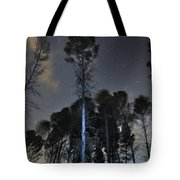Deep Forest At Night Tote Bag