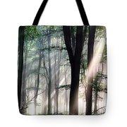 Deep Forest Morning Light Tote Bag