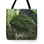 Deep In The Gorge Tote Bag
