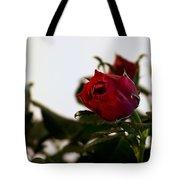 Deep Red Roses Tote Bag