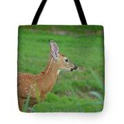 Deer 13 Tote Bag
