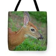 Deer 17 Tote Bag