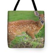 Deer 24 Tote Bag