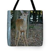 Deer 3 Tote Bag