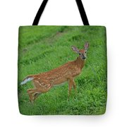Deer 6 Tote Bag