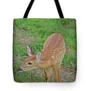 Deer 7 Tote Bag