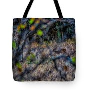 Deer A Doe A Female Deer Tote Bag
