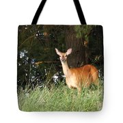 Deer At Dusk V3 Tote Bag