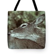 Deer Close-up Tote Bag
