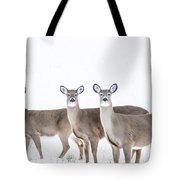 Deer Deer Deer Tote Bag