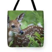 Flora And Fawna Tote Bag