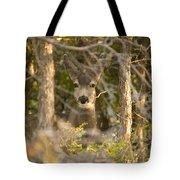 Deer Frame Tote Bag